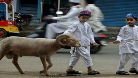 बकरीद के बारे में कुछ तथ्य जिसे जानना जरूरी है, आखिर क्यों मनाया जाता है यह त्योहार