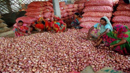 प्याज की कीमतों में लगातार हो रही भारी गिरावट से परेशान हुए नासिक के किसान